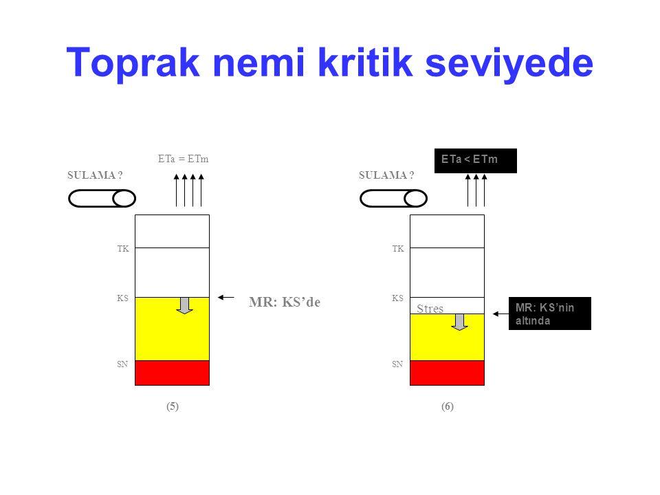 Toprak nemi kritik seviyede SULAMA ? SN KS TK (5) MR: KS'de ETa = ETm SN KS TK (6) MR: KS'nin altında Stres ETa < ETm SULAMA ?