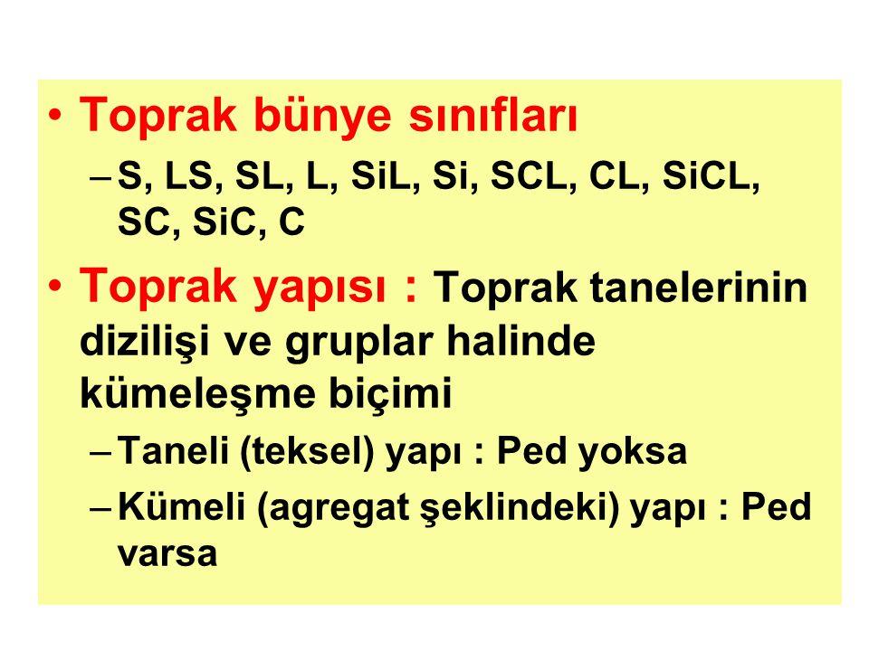 Toprak bünye sınıfları –S, LS, SL, L, SiL, Si, SCL, CL, SiCL, SC, SiC, C Toprak yapısı : Toprak tanelerinin dizilişi ve gruplar halinde kümeleşme biçimi –Taneli (teksel) yapı : Ped yoksa –Kümeli (agregat şeklindeki) yapı : Ped varsa