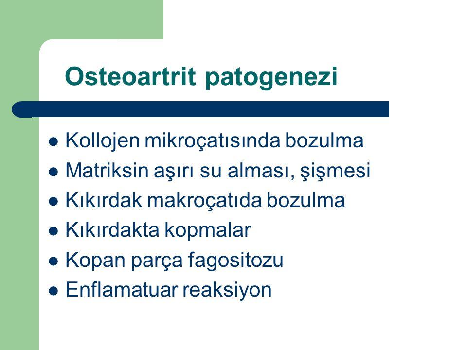 Osteoartrit patogenezi Kollojen mikroçatısında bozulma Matriksin aşırı su alması, şişmesi Kıkırdak makroçatıda bozulma Kıkırdakta kopmalar Kopan parça