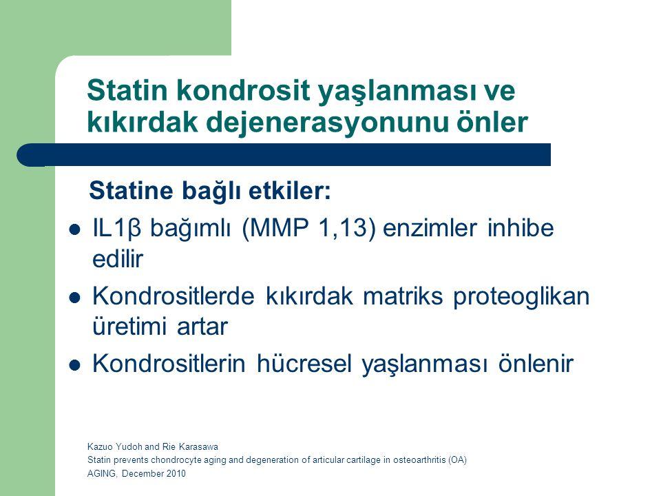 Statin kondrosit yaşlanması ve kıkırdak dejenerasyonunu önler Statine bağlı etkiler: IL1β bağımlı (MMP 1,13) enzimler inhibe edilir Kondrositlerde kık