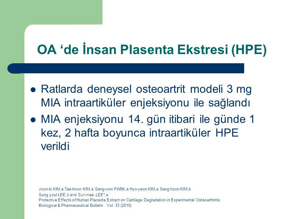 OA 'de İnsan Plasenta Ekstresi (HPE) Ratlarda deneysel osteoartrit modeli 3 mg MIA intraartiküler enjeksiyonu ile sağlandı MIA enjeksiyonu 14. gün iti