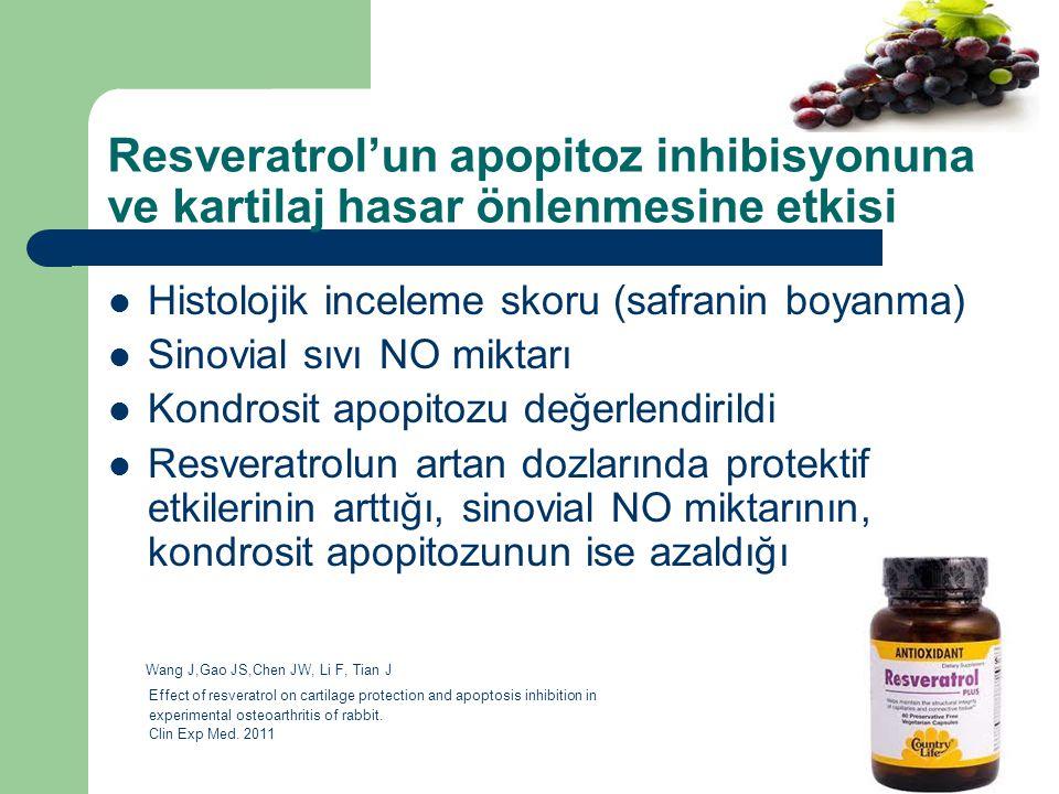 Resveratrol'un apopitoz inhibisyonuna ve kartilaj hasar önlenmesine etkisi Histolojik inceleme skoru (safranin boyanma) Sinovial sıvı NO miktarı Kondr