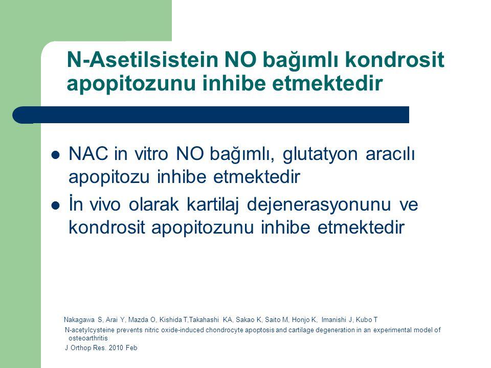 N-Asetilsistein NO bağımlı kondrosit apopitozunu inhibe etmektedir NAC in vitro NO bağımlı, glutatyon aracılı apopitozu inhibe etmektedir İn vivo olar