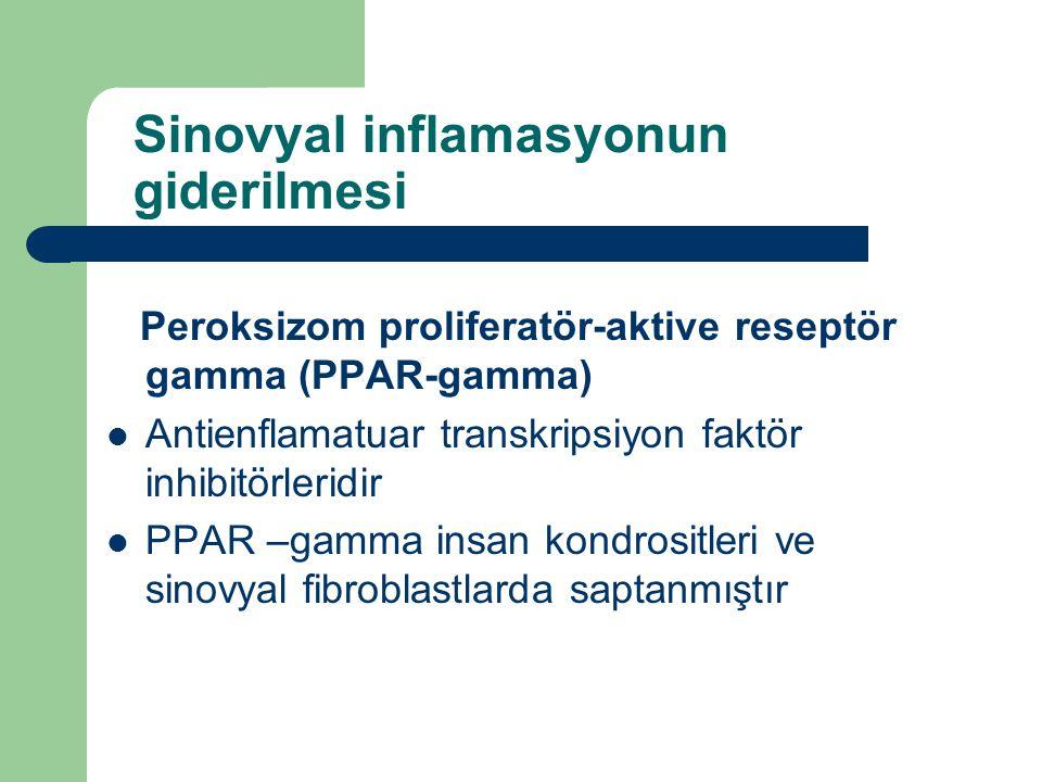 Sinovyal inflamasyonun giderilmesi Peroksizom proliferatör-aktive reseptör gamma (PPAR-gamma) Antienflamatuar transkripsiyon faktör inhibitörleridir P