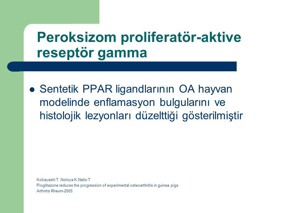 Peroksizom proliferatör-aktive reseptör gamma Sentetik PPAR ligandlarının OA hayvan modelinde enflamasyon bulgularını ve histolojik lezyonları düzeltt