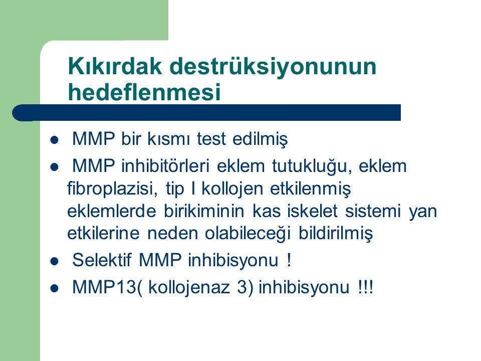 Kıkırdak destrüksiyonunun hedeflenmesi MMP bir kısmı test edilmiş MMP inhibitörleri eklem tutukluğu, eklem fibroplazisi, tip I kollojen etkilenmiş ekl