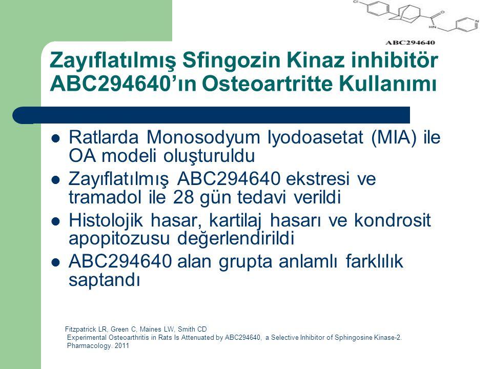 Zayıflatılmış Sfingozin Kinaz inhibitör ABC294640'ın Osteoartritte Kullanımı Ratlarda Monosodyum Iyodoasetat (MIA) ile OA modeli oluşturuldu Zayıflatı