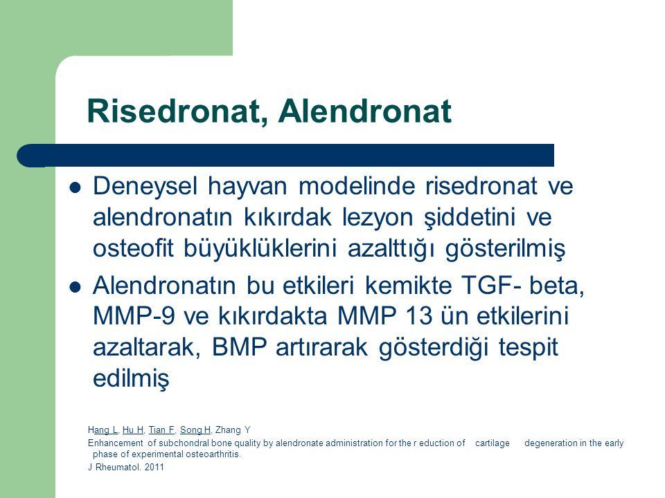 Risedronat, Alendronat Deneysel hayvan modelinde risedronat ve alendronatın kıkırdak lezyon şiddetini ve osteofit büyüklüklerini azalttığı gösterilmiş
