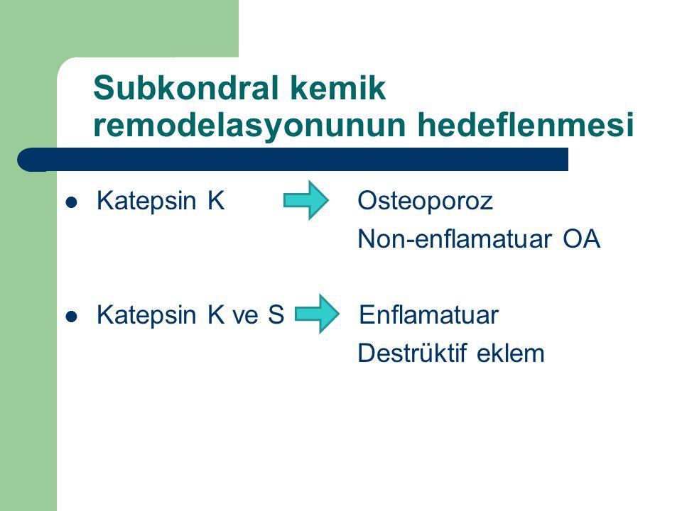 Subkondral kemik remodelasyonunun hedeflenmesi Katepsin K Osteoporoz Non-enflamatuar OA Katepsin K ve S Enflamatuar Destrüktif eklem