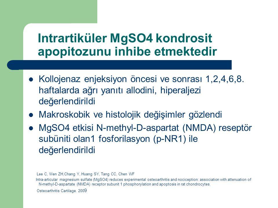 Intrartiküler MgSO4 kondrosit apopitozunu inhibe etmektedir Kollojenaz enjeksiyon öncesi ve sonrası 1,2,4,6,8. haftalarda ağrı yanıtı allodini, hipera
