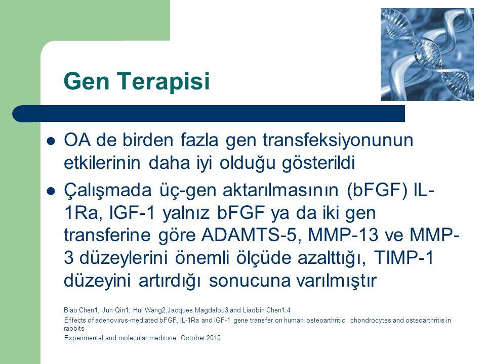 Gen Terapisi OA de birden fazla gen transfeksiyonunun etkilerinin daha iyi olduğu gösterildi Çalışmada üç-gen aktarılmasının (bFGF) IL- 1Ra, IGF-1 yal