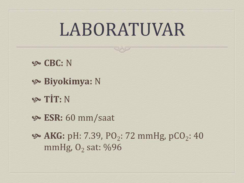 LABORATUVAR  CBC: N  Biyokimya: N  TİT: N  ESR: 60 mm/saat  AKG: pH: 7.39, PO 2 : 72 mmHg, pCO 2 : 40 mmHg, O 2 sat: %96