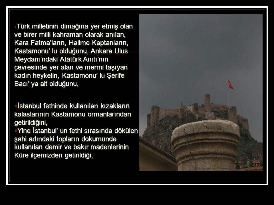  İstanbul fethinde kullanılan kızakların kalaslarının Kastamonu ormanlarından getirildiğini,  Yine İstanbul un fethi sırasında dökülen şahi adındaki topların dökümünde kullanılan demir ve bakır madenlerinin Küre ilçemizden getirildiği,  Türk milletinin dimağına yer etmiş olan ve birer milli kahraman olarak anılan, Kara Fatma'ların, Halime Kaptanların, Kastamonu' lu olduğunu, Ankara Ulus Meydanı'ndaki Atatürk Anıtı'nın çevresinde yer alan ve mermi taşıyan kadın heykelin, Kastamonu' lu Şerife Bacı' ya ait olduğunu,