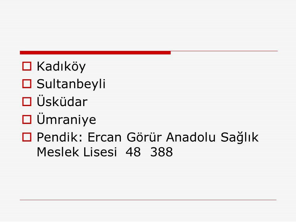  Kadıköy  Sultanbeyli  Üsküdar  Ümraniye  Pendik: Ercan Görür Anadolu Sağlık Meslek Lisesi 48 388