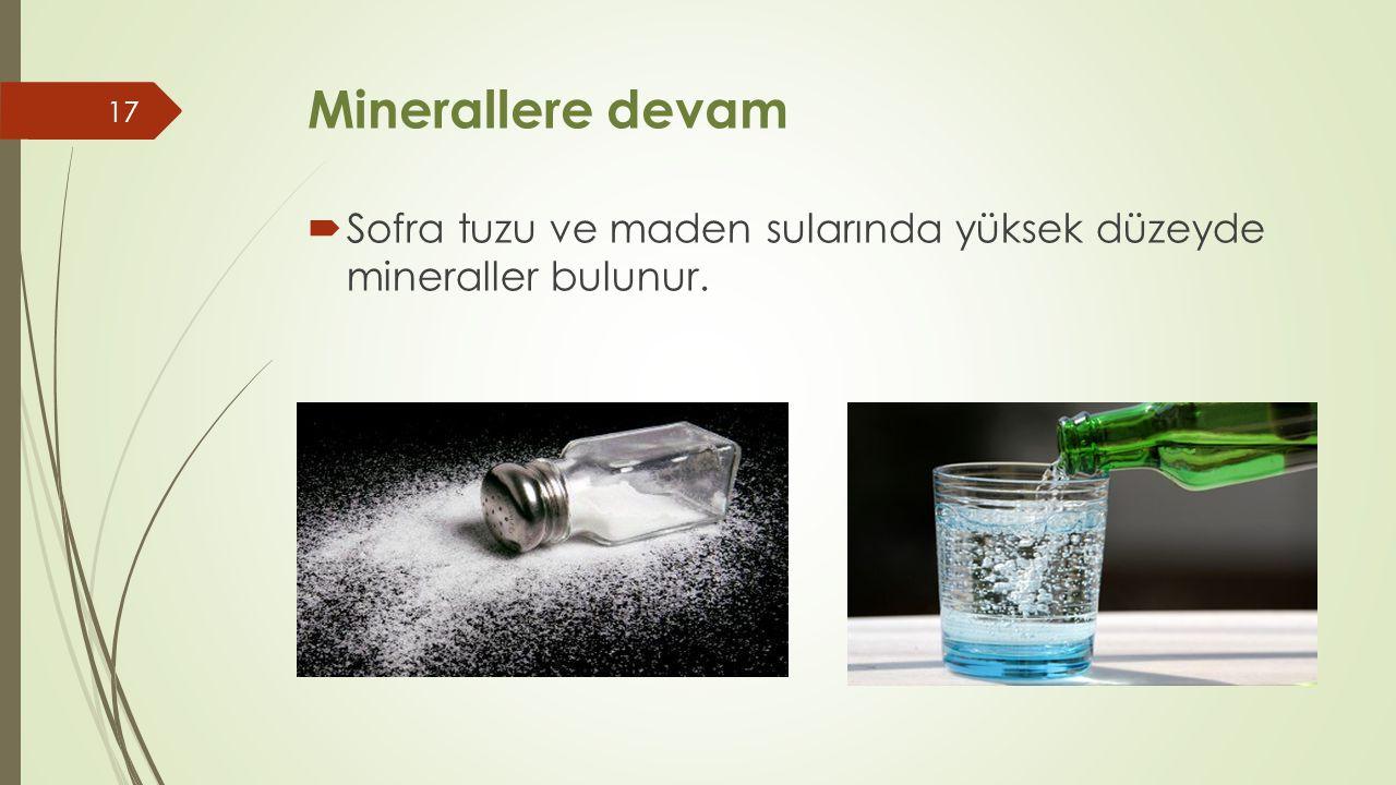 Minerallere devam  Sofra tuzu ve maden sularında yüksek düzeyde mineraller bulunur. 17