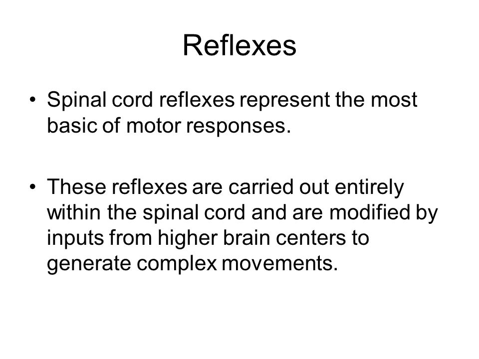 Nerve cells (neurons) carry the message from the stimulated receptors to the correct effectors.