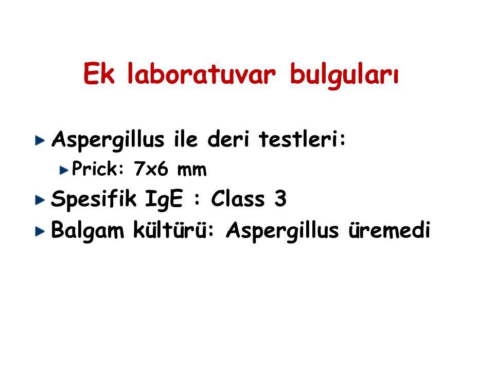 Ek laboratuvar bulguları Aspergillus ile deri testleri: Prick: 7x6 mm Spesifik IgE : Class 3 Balgam kültürü: Aspergillus üremedi