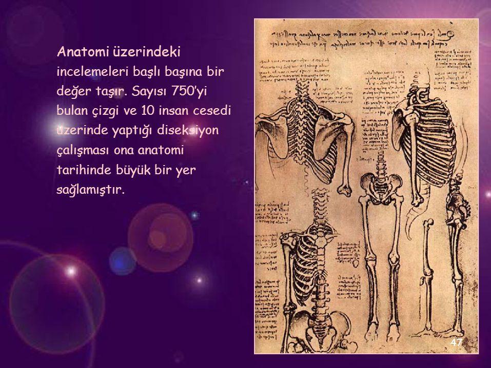 Anatomi üzerindeki incelemeleri başlı başına bir değer taşır. Sayısı 750'yi bulan çizgi ve 10 insan cesedi üzerinde yaptığı diseksiyon çalışması ona a
