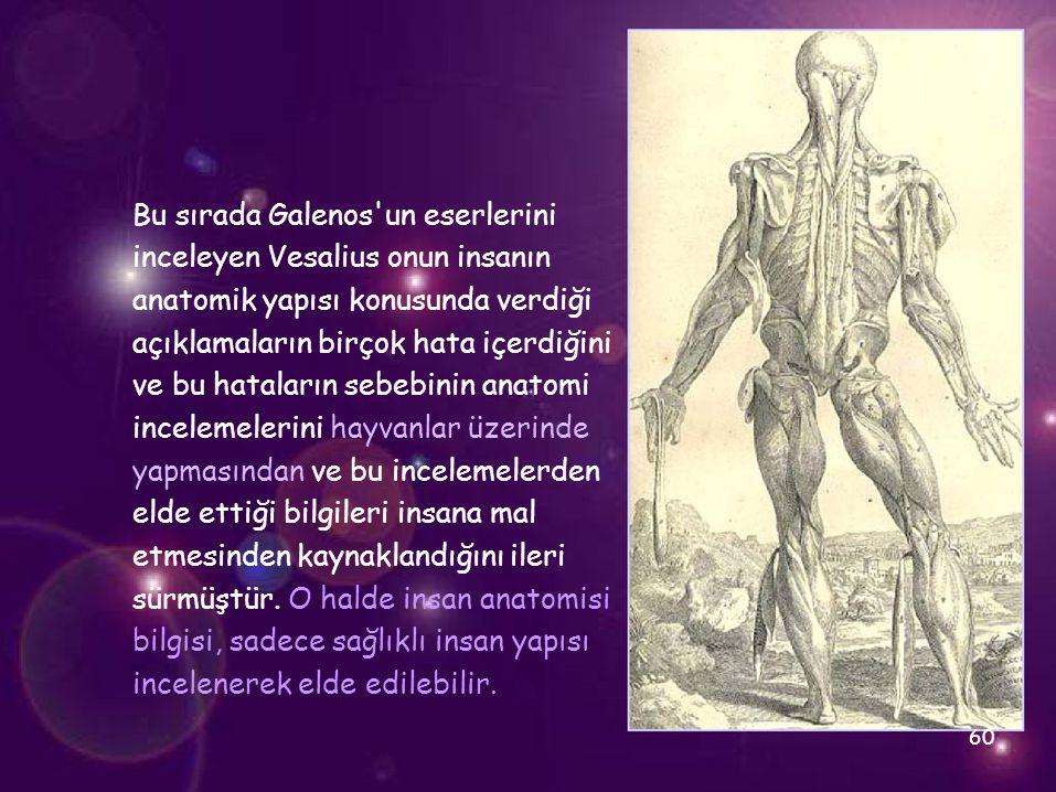 Bu sırada Galenos'un eserlerini inceleyen Vesalius onun insanın anatomik yapısı konusunda verdiği açıklamaların birçok hata içerdiğini ve bu hataların