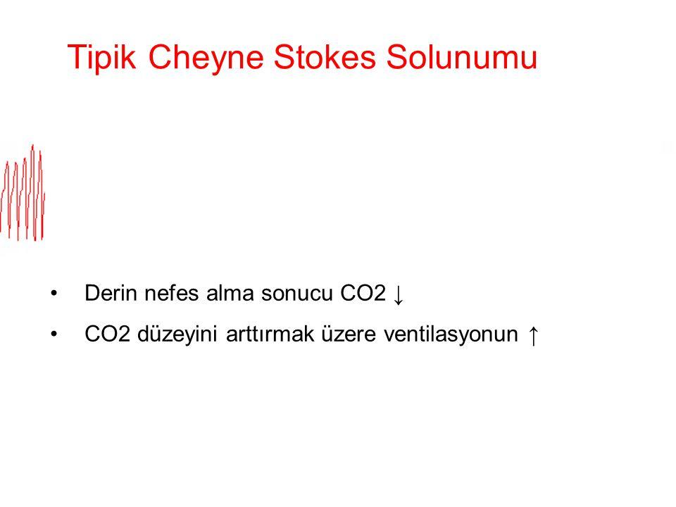 Tipik Cheyne Stokes Solunumu Derin nefes alma sonucu CO2 ↓ CO2 düzeyini arttırmak üzere ventilasyonun ↑