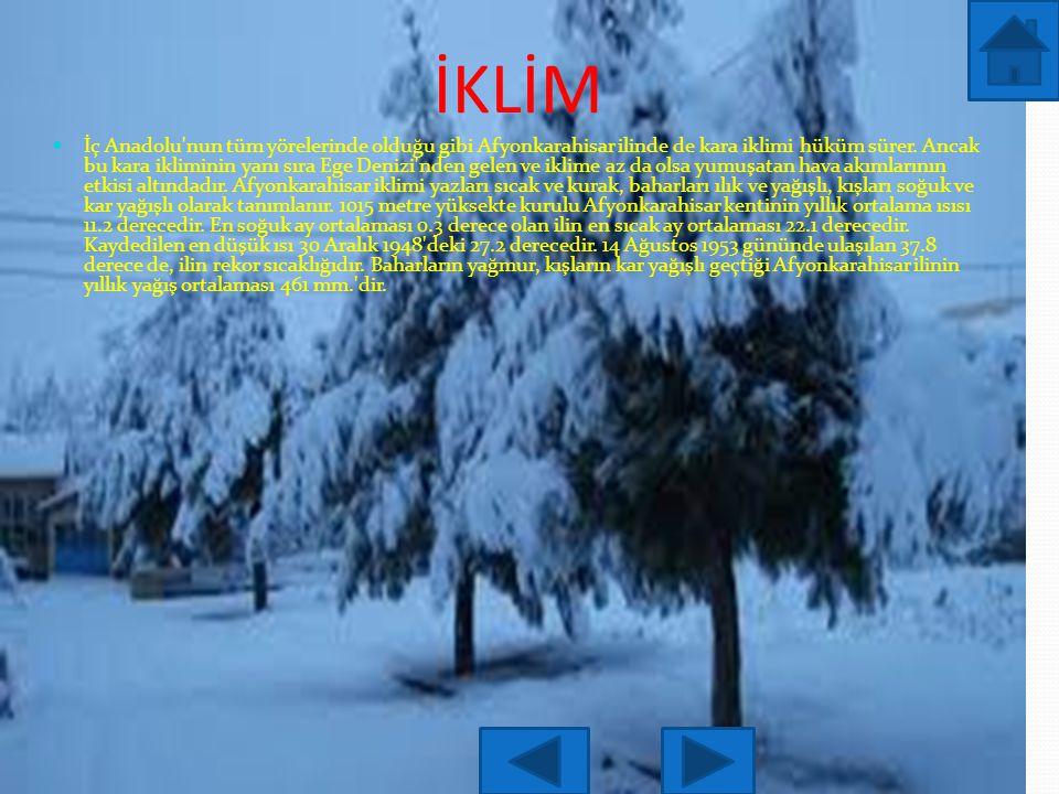 İKLİM İç Anadolu nun tüm yörelerinde olduğu gibi Afyonkarahisar ilinde de kara iklimi hüküm sürer.