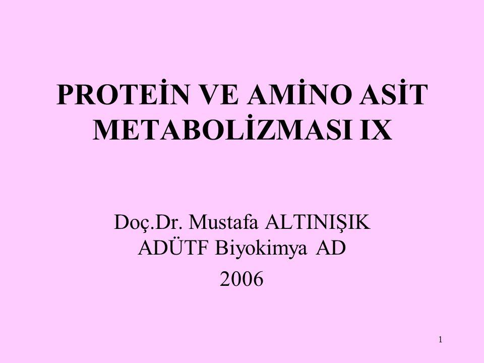 1 PROTEİN VE AMİNO ASİT METABOLİZMASI IX Doç.Dr. Mustafa ALTINIŞIK ADÜTF Biyokimya AD 2006