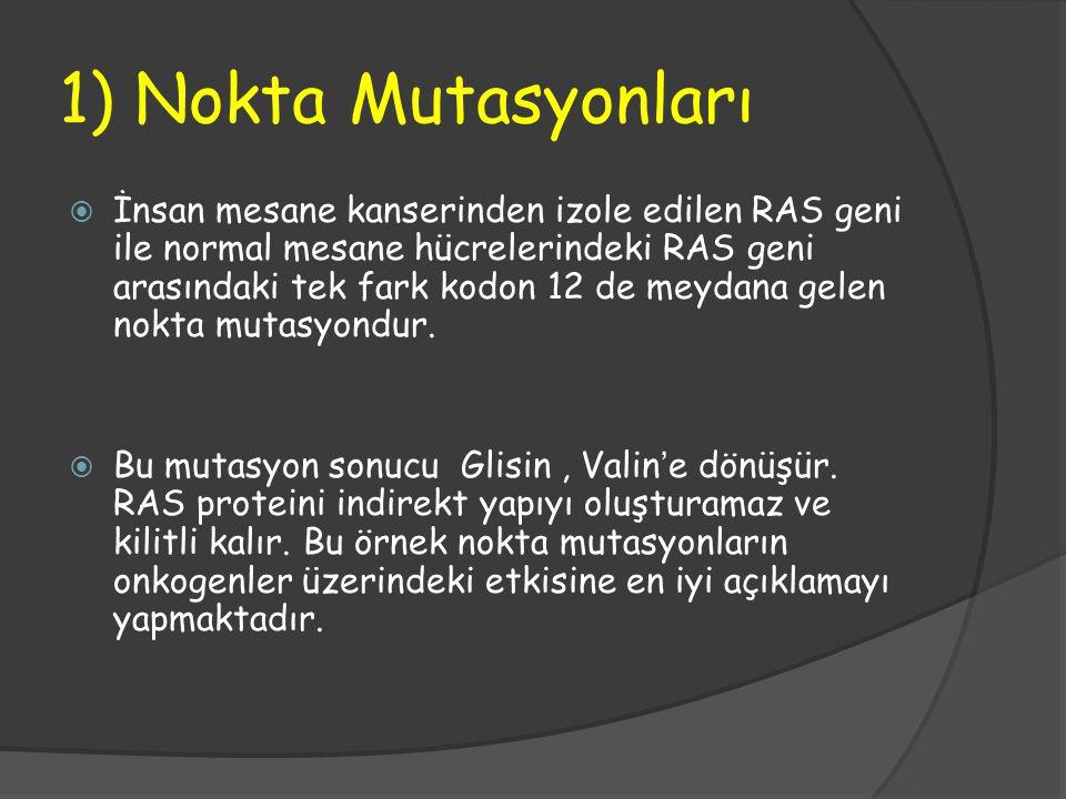 1) Nokta Mutasyonları  İnsan mesane kanserinden izole edilen RAS geni ile normal mesane hücrelerindeki RAS geni arasındaki tek fark kodon 12 de meyda