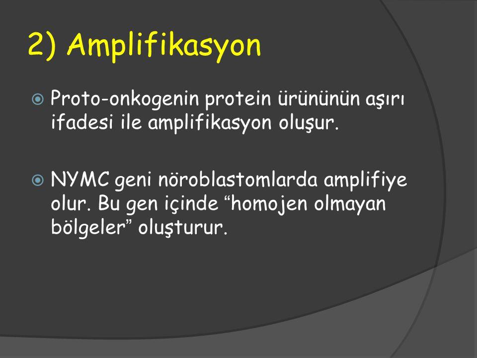 2) Amplifikasyon  Proto-onkogenin protein ürününün aşırı ifadesi ile amplifikasyon oluşur.  NYMC geni nöroblastomlarda amplifiye olur. Bu gen içinde