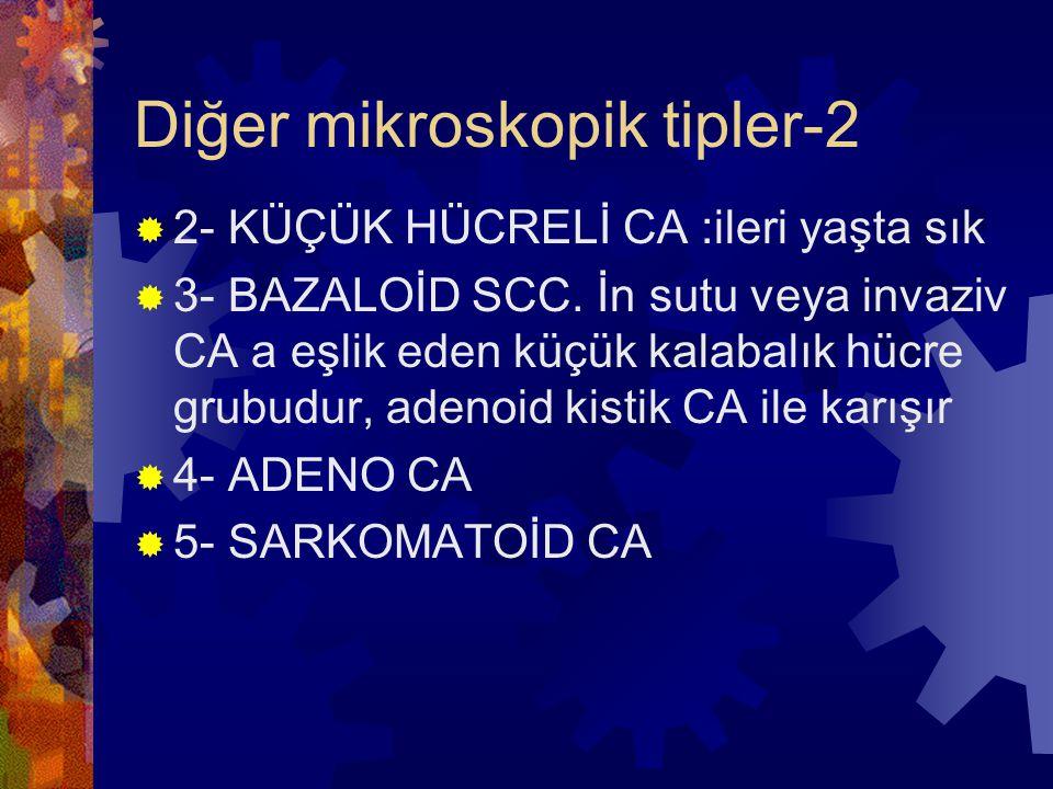 Diğer mikroskopik tipler-2  2- KÜÇÜK HÜCRELİ CA :ileri yaşta sık  3- BAZALOİD SCC.