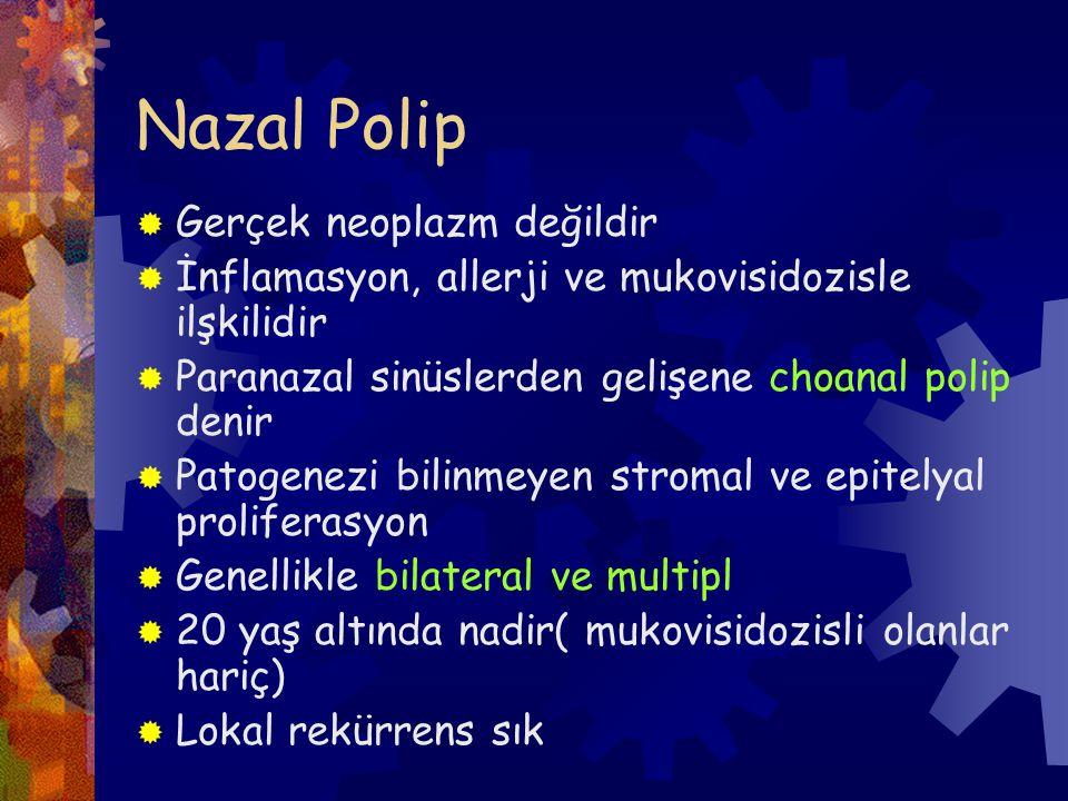 Nazal Polip  Gerçek neoplazm değildir  İnflamasyon, allerji ve mukovisidozisle ilşkilidir  Paranazal sinüslerden gelişene choanal polip denir  Patogenezi bilinmeyen stromal ve epitelyal proliferasyon  Genellikle bilateral ve multipl  20 yaş altında nadir( mukovisidozisli olanlar hariç)  Lokal rekürrens sık