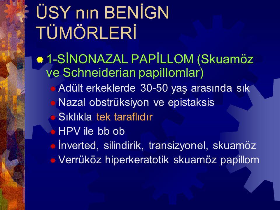 ÜSY nın BENİGN TÜMÖRLERİ  1-SİNONAZAL PAPİLLOM (Skuamöz ve Schneiderian papillomlar)  Adült erkeklerde 30-50 yaş arasında sık  Nazal obstrüksiyon ve epistaksis  Sıklıkla tek taraflıdır  HPV ile bb ob  İnverted, silindirik, transizyonel, skuamöz  Verrüköz hiperkeratotik skuamöz papillom