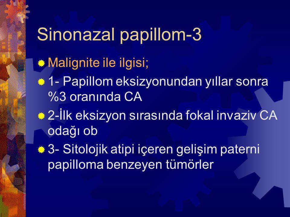 Sinonazal papillom-3  Malignite ile ilgisi;  1- Papillom eksizyonundan yıllar sonra %3 oranında CA  2-İlk eksizyon sırasında fokal invaziv CA odağı ob  3- Sitolojik atipi içeren gelişim paterni papilloma benzeyen tümörler