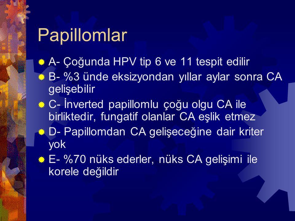 Papillomlar  A- Çoğunda HPV tip 6 ve 11 tespit edilir  B- %3 ünde eksizyondan yıllar aylar sonra CA gelişebilir  C- İnverted papillomlu çoğu olgu CA ile birliktedir, fungatif olanlar CA eşlik etmez  D- Papillomdan CA gelişeceğine dair kriter yok  E- %70 nüks ederler, nüks CA gelişimi ile korele değildir