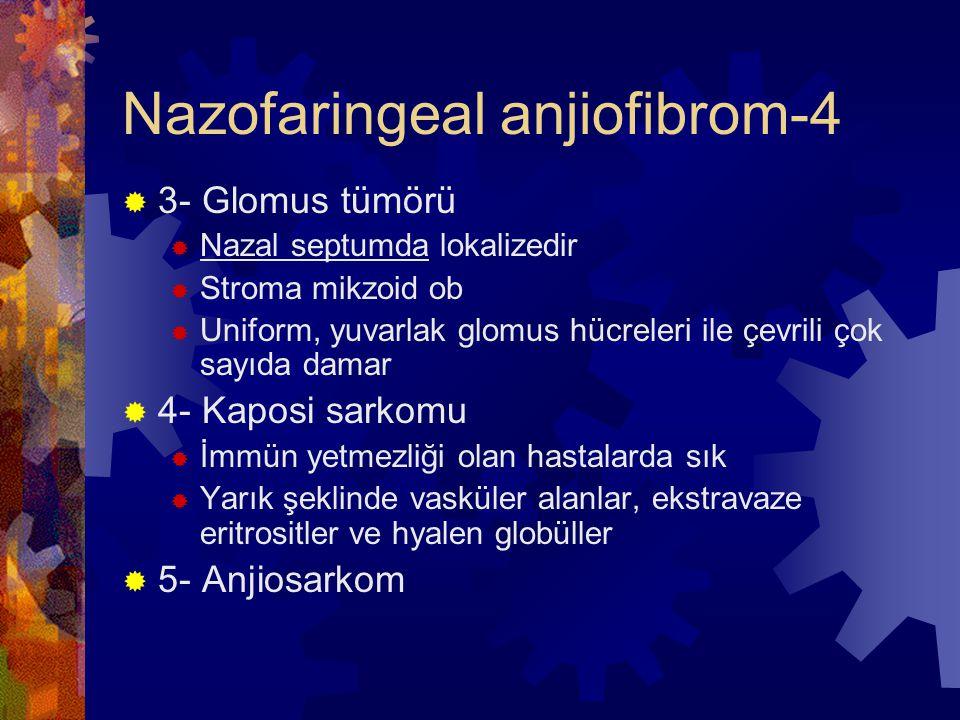 Nazofaringeal anjiofibrom-4  3- Glomus tümörü  Nazal septumda lokalizedir  Stroma mikzoid ob  Uniform, yuvarlak glomus hücreleri ile çevrili çok sayıda damar  4- Kaposi sarkomu  İmmün yetmezliği olan hastalarda sık  Yarık şeklinde vasküler alanlar, ekstravaze eritrositler ve hyalen globüller  5- Anjiosarkom