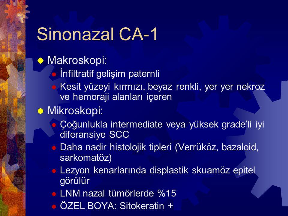Sinonazal CA-1  Makroskopi:  İnfiltratif gelişim paternli  Kesit yüzeyi kırmızı, beyaz renkli, yer yer nekroz ve hemoraji alanları içeren  Mikroskopi:  Çoğunlukla intermediate veya yüksek grade'li iyi diferansiye SCC  Daha nadir histolojik tipleri (Verrüköz, bazaloid, sarkomatöz)  Lezyon kenarlarında displastik skuamöz epitel görülür  LNM nazal tümörlerde %15  ÖZEL BOYA: Sitokeratin +