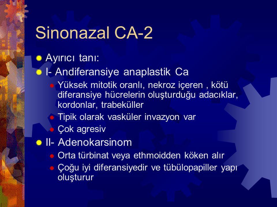 Sinonazal CA-2  Ayırıcı tanı:  I- Andiferansiye anaplastik Ca  Yüksek mitotik oranlı, nekroz içeren, kötü diferansiye hücrelerin oluşturduğu adacıklar, kordonlar, trabeküller  Tipik olarak vasküler invazyon var  Çok agresiv  II- Adenokarsinom  Orta türbinat veya ethmoidden köken alır  Çoğu iyi diferansiyedir ve tübülopapiller yapı oluşturur