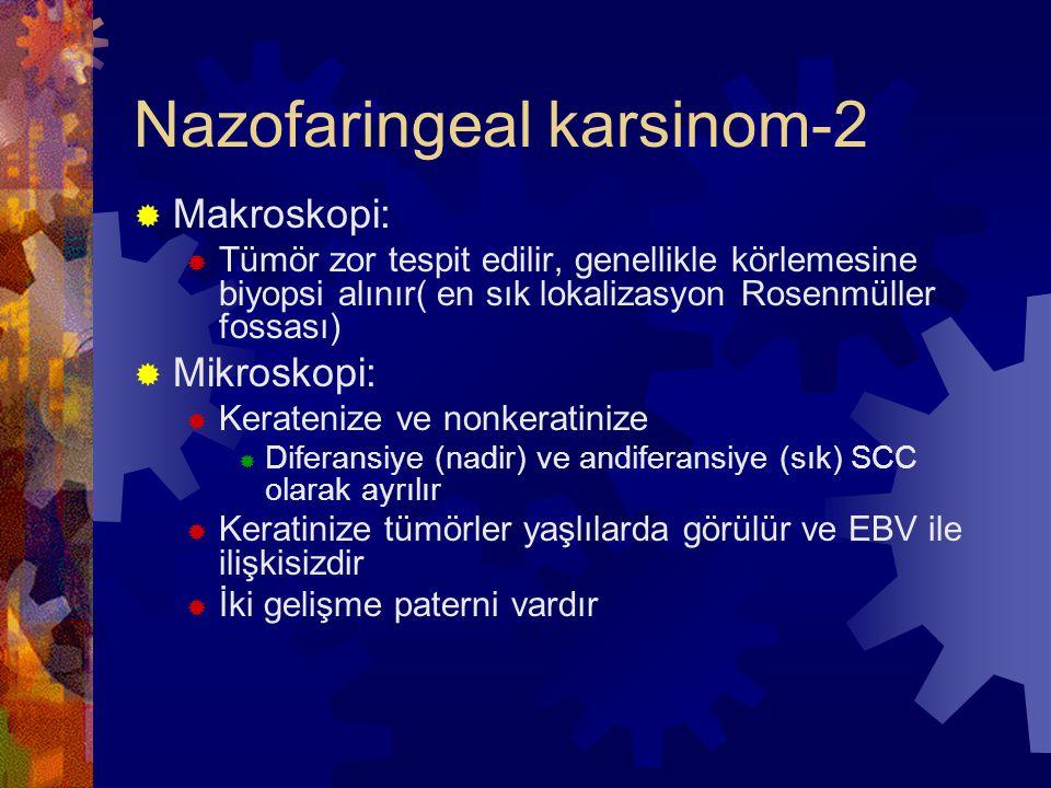 Nazofaringeal karsinom-2  Makroskopi:  Tümör zor tespit edilir, genellikle körlemesine biyopsi alınır( en sık lokalizasyon Rosenmüller fossası)  Mikroskopi:  Keratenize ve nonkeratinize  Diferansiye (nadir) ve andiferansiye (sık) SCC olarak ayrılır  Keratinize tümörler yaşlılarda görülür ve EBV ile ilişkisizdir  İki gelişme paterni vardır