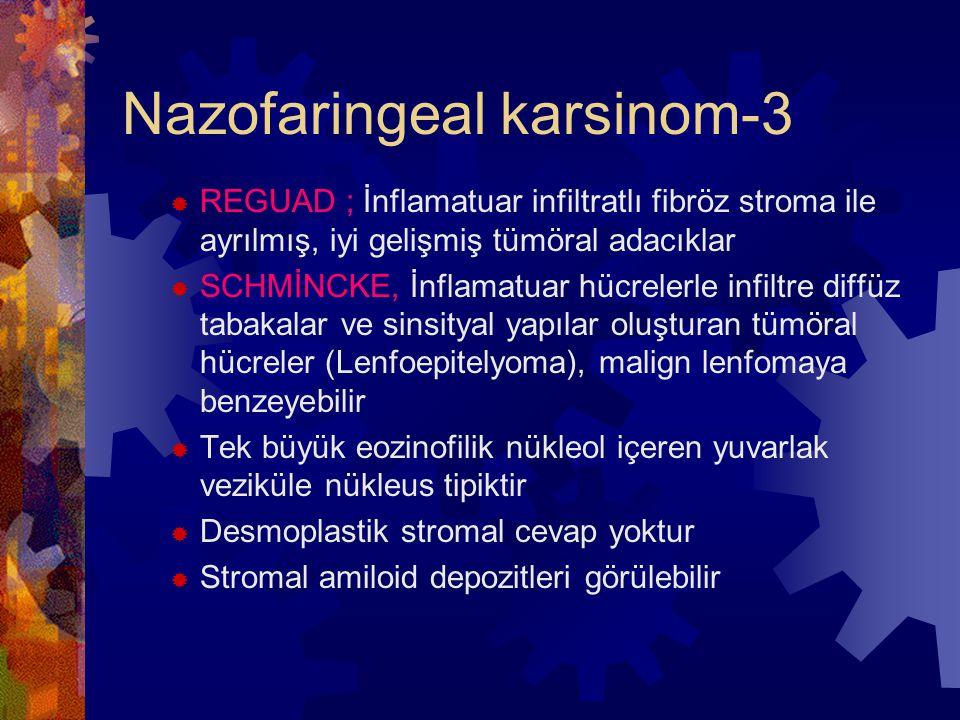 Nazofaringeal karsinom-3  REGUAD ; İnflamatuar infiltratlı fibröz stroma ile ayrılmış, iyi gelişmiş tümöral adacıklar  SCHMİNCKE, İnflamatuar hücrelerle infiltre diffüz tabakalar ve sinsityal yapılar oluşturan tümöral hücreler (Lenfoepitelyoma), malign lenfomaya benzeyebilir  Tek büyük eozinofilik nükleol içeren yuvarlak veziküle nükleus tipiktir  Desmoplastik stromal cevap yoktur  Stromal amiloid depozitleri görülebilir