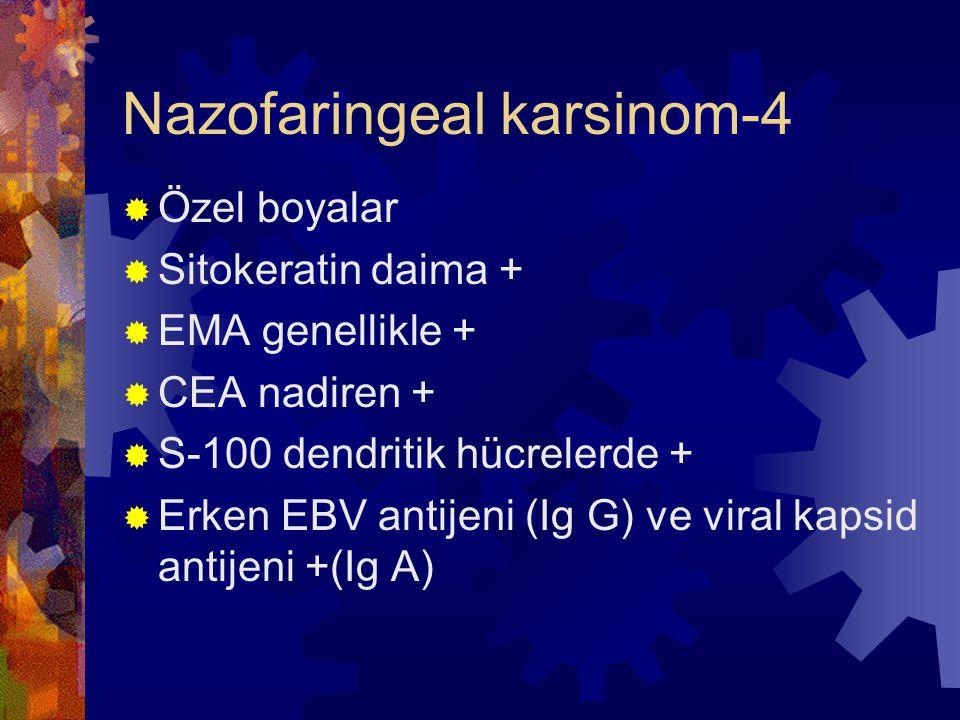 Nazofaringeal karsinom-4  Özel boyalar  Sitokeratin daima +  EMA genellikle +  CEA nadiren +  S-100 dendritik hücrelerde +  Erken EBV antijeni (Ig G) ve viral kapsid antijeni +(Ig A)