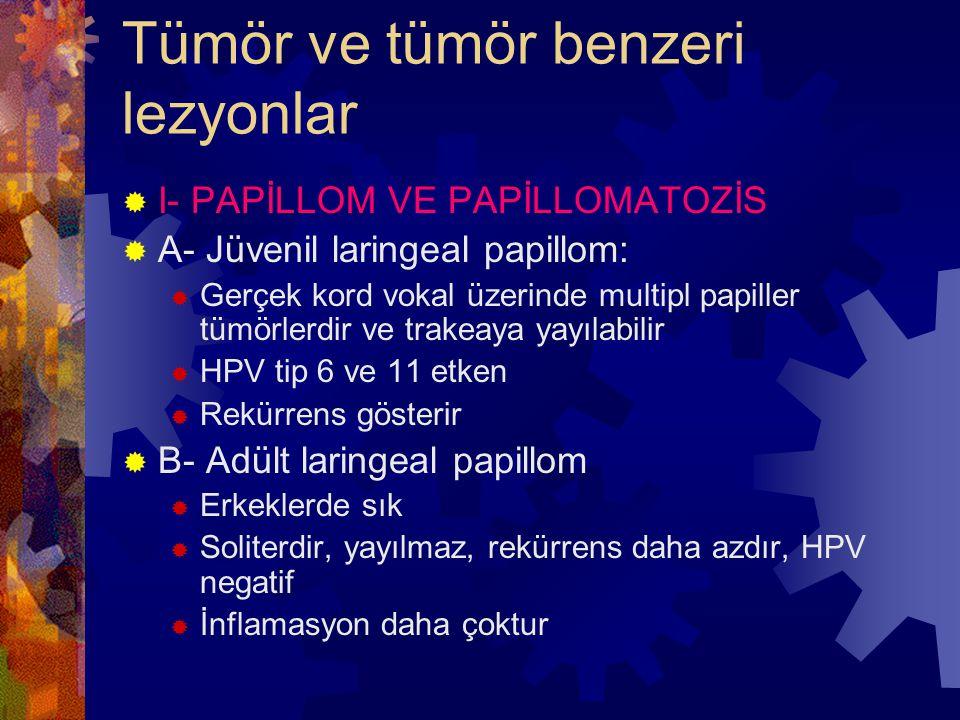 Tümör ve tümör benzeri lezyonlar  I- PAPİLLOM VE PAPİLLOMATOZİS  A- Jüvenil laringeal papillom:  Gerçek kord vokal üzerinde multipl papiller tümörlerdir ve trakeaya yayılabilir  HPV tip 6 ve 11 etken  Rekürrens gösterir  B- Adült laringeal papillom  Erkeklerde sık  Soliterdir, yayılmaz, rekürrens daha azdır, HPV negatif  İnflamasyon daha çoktur