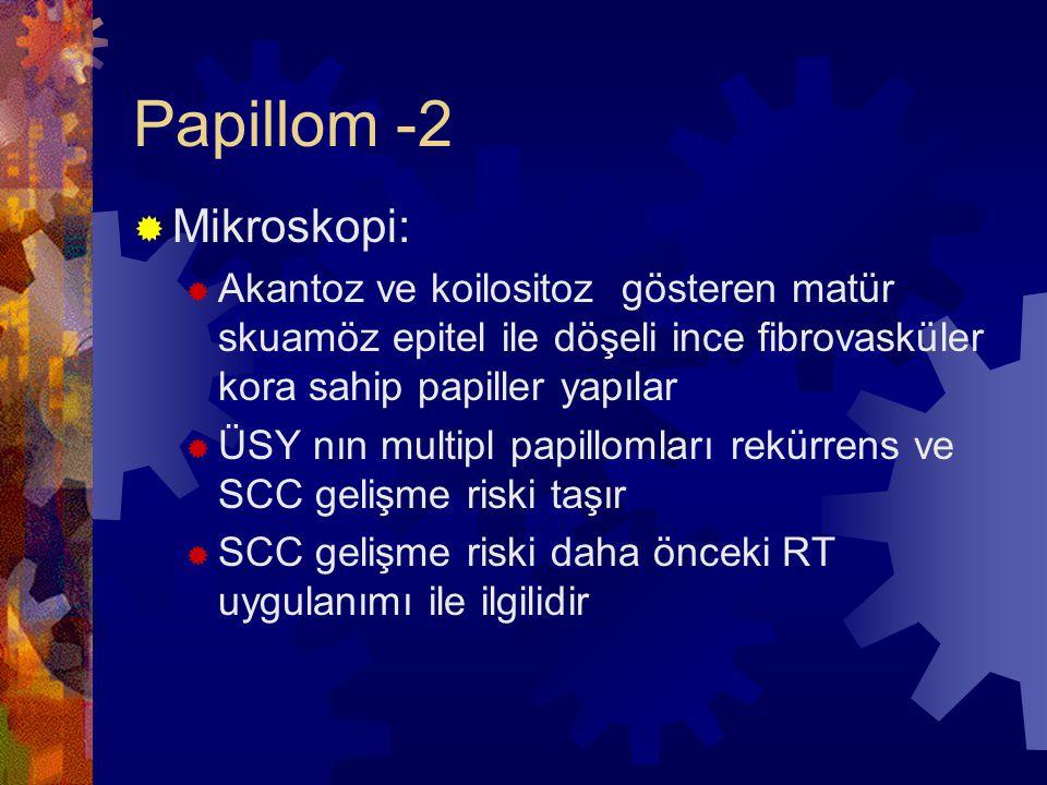 Papillom -2  Mikroskopi:  Akantoz ve koilositoz gösteren matür skuamöz epitel ile döşeli ince fibrovasküler kora sahip papiller yapılar  ÜSY nın multipl papillomları rekürrens ve SCC gelişme riski taşır  SCC gelişme riski daha önceki RT uygulanımı ile ilgilidir