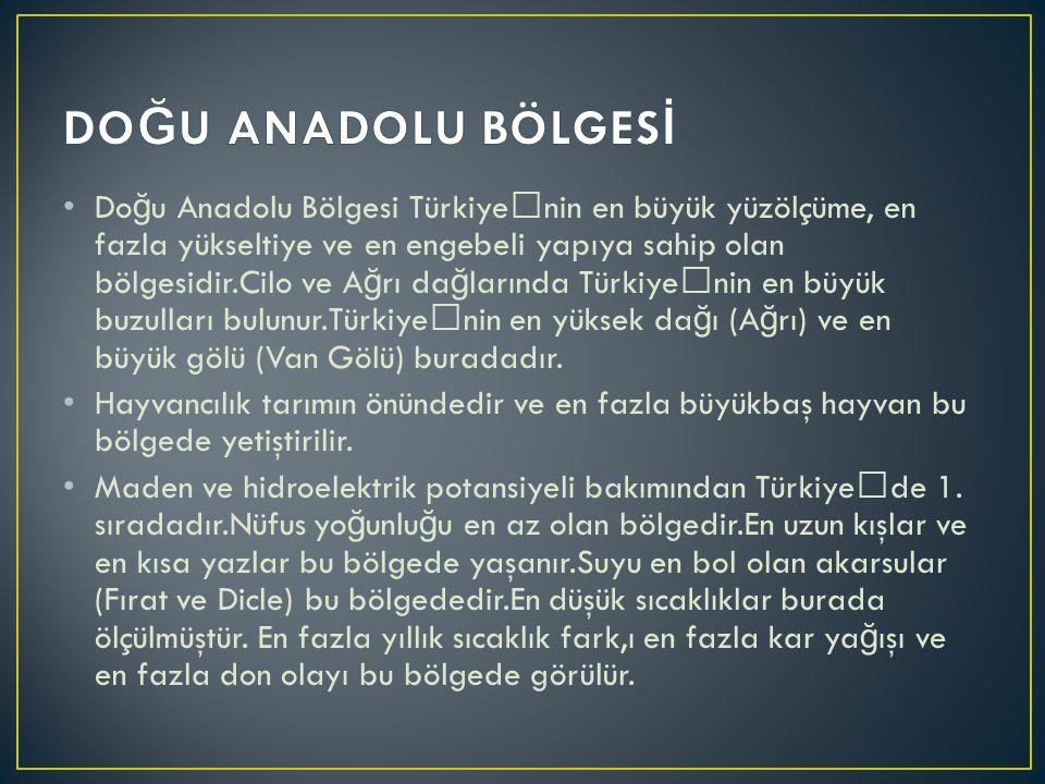 Do ğ u Anadolu Bölgesi Türkiye'nin en büyük yüzölçüme, en fazla yükseltiye ve en engebeli yapıya sahip olan bölgesidir.Cilo ve A ğ rı da ğ larında Tür