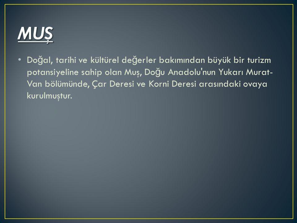 Do ğ al, tarihi ve kültürel de ğ erler bakımından büyük bir turizm potansiyeline sahip olan Muş, Do ğ u Anadolu'nun Yukarı Murat- Van bölümünde, Çar D