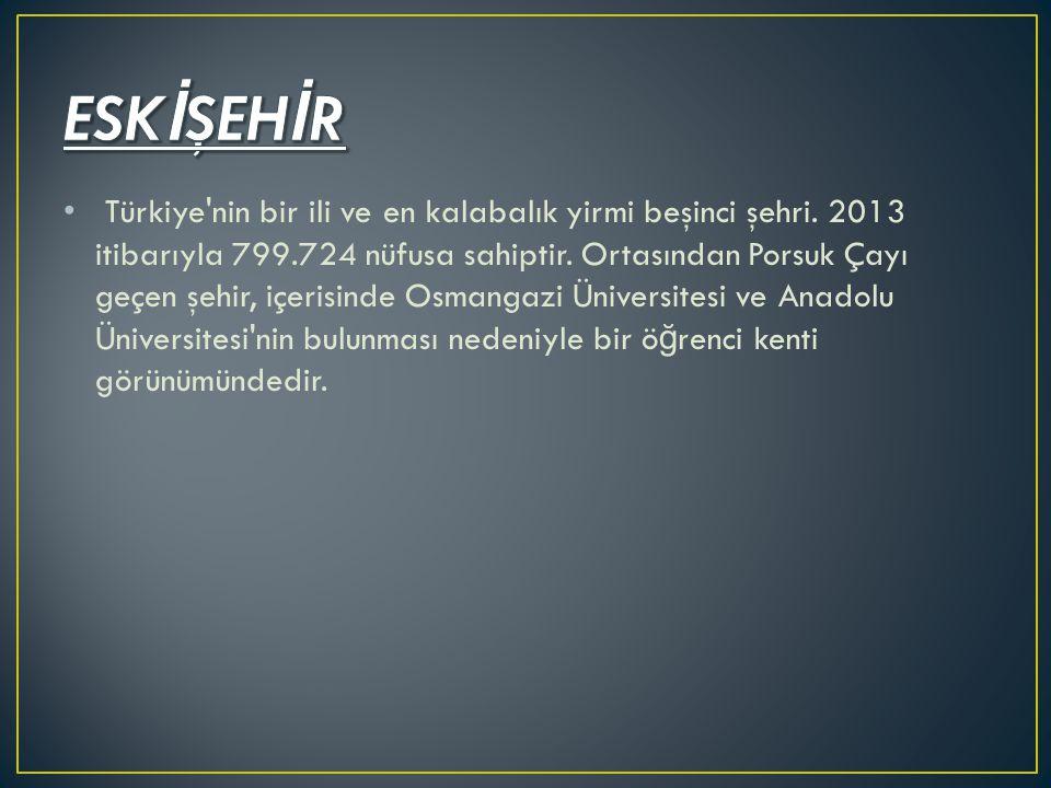 Türkiye'nin bir ili ve en kalabalık yirmi beşinci şehri. 2013 itibarıyla 799.724 nüfusa sahiptir. Ortasından Porsuk Çayı geçen şehir, içerisinde Osman