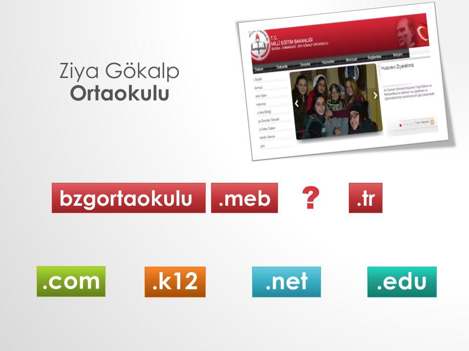 Ziya Gökalp Ortaokulu bzgortaokulu.meb.tr.k12.com.net.edu ?
