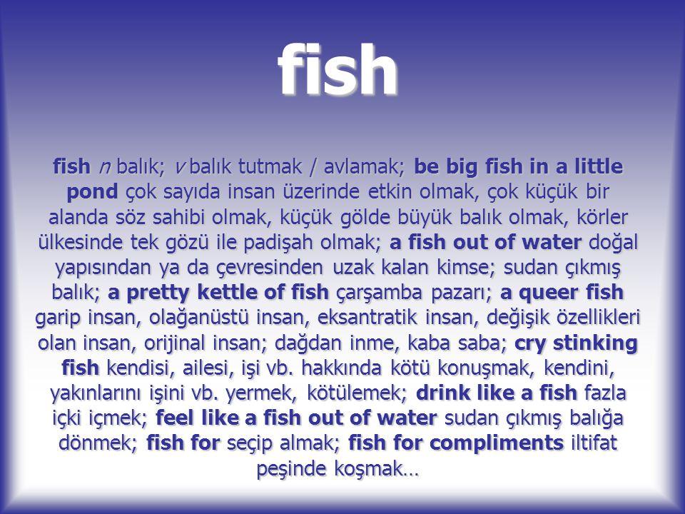 fish fish n balık; v balık tutmak / avlamak; be big fish in a little pond çok sayıda insan üzerinde etkin olmak, çok küçük bir alanda söz sahibi olmak