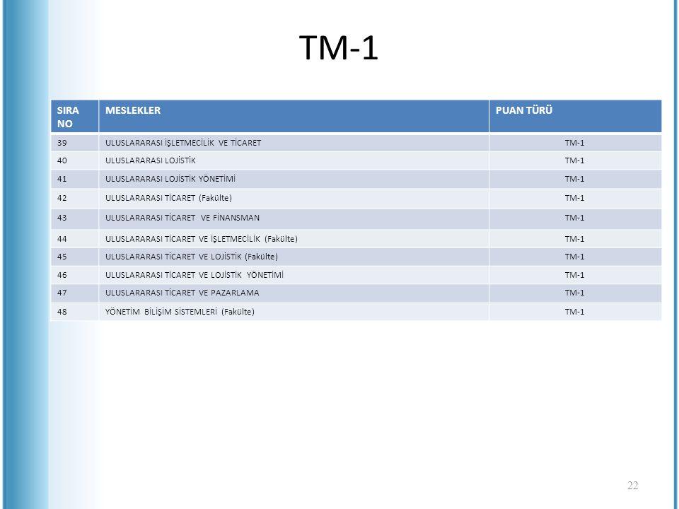 TM-1 SIRA NO MESLEKLERPUAN TÜRÜ 39ULUSLARARASI İŞLETMECİLİK VE TİCARETTM-1 40ULUSLARARASI LOJİSTİKTM-1 41ULUSLARARASI LOJİSTİK YÖNETİMİTM-1 42ULUSLARA
