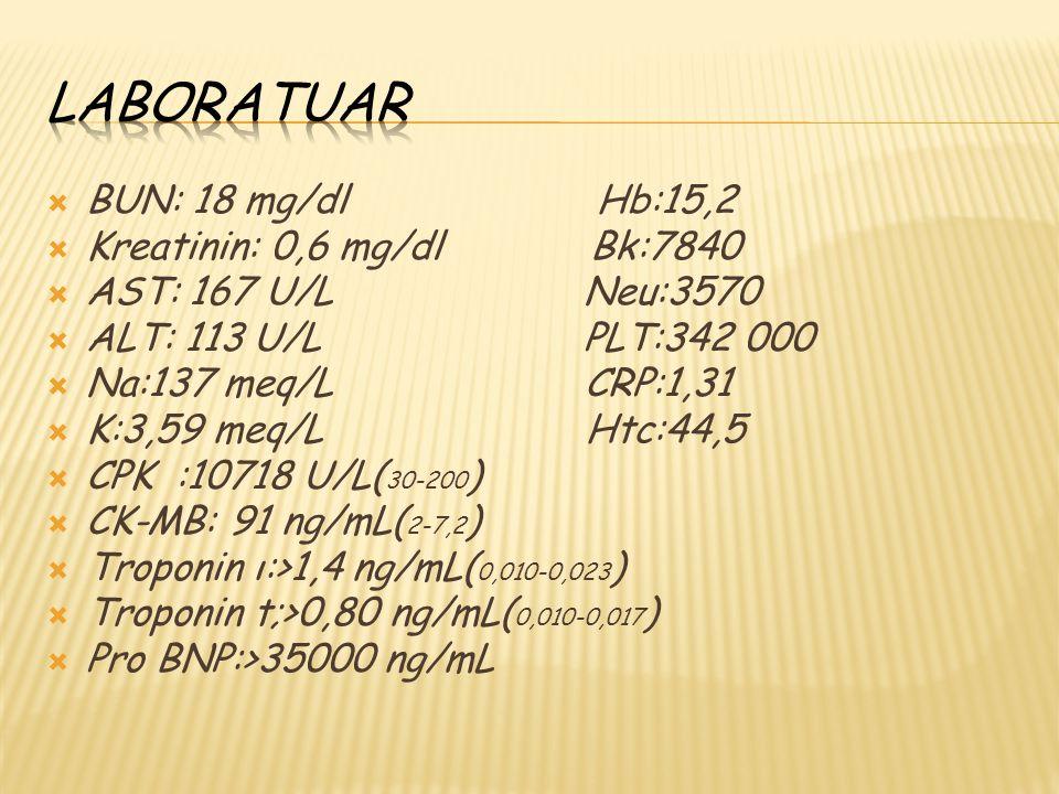  BUN: 18 mg/dl Hb:15,2  Kreatinin: 0,6 mg/dl Bk:7840  AST: 167 U/L Neu:3570  ALT: 113 U/L PLT:342 000  Na:137 meq/L CRP:1,31  K:3,59 meq/L Htc:4