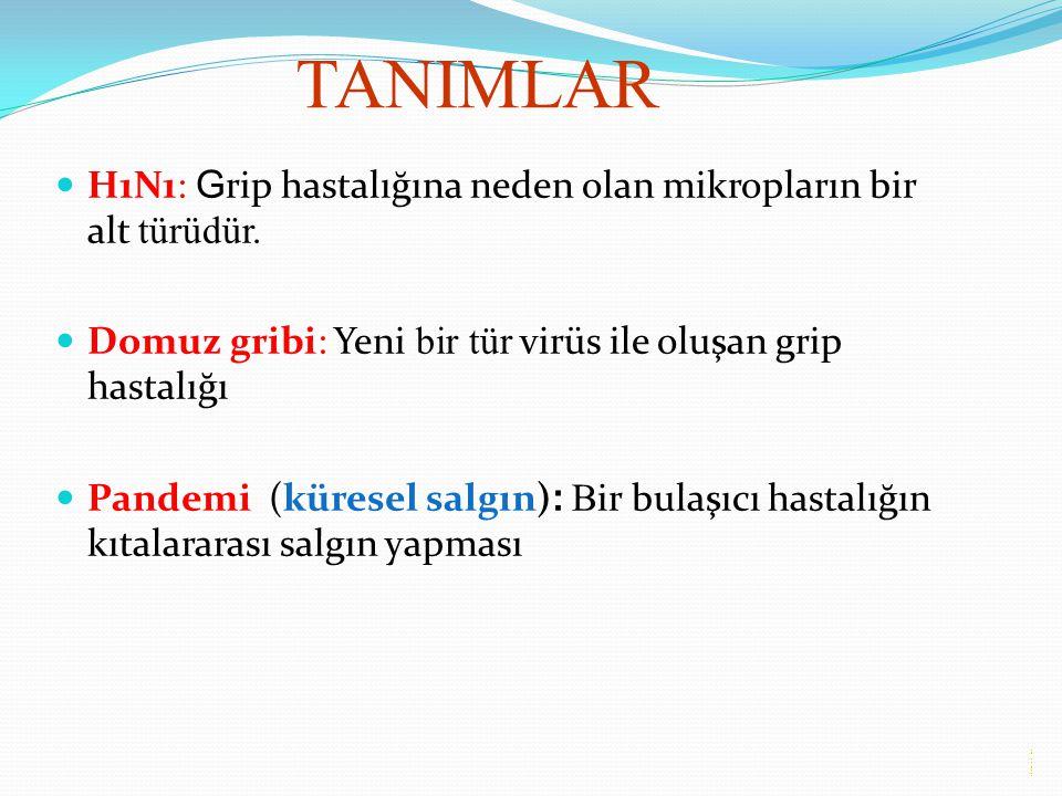 TANIMLAR H1N1: G rip hastalığına neden olan mikropların bir alt türüdür. Domuz gribi: Yeni bir tür virüs ile oluşan grip hastalığı Pandemi (küresel sa