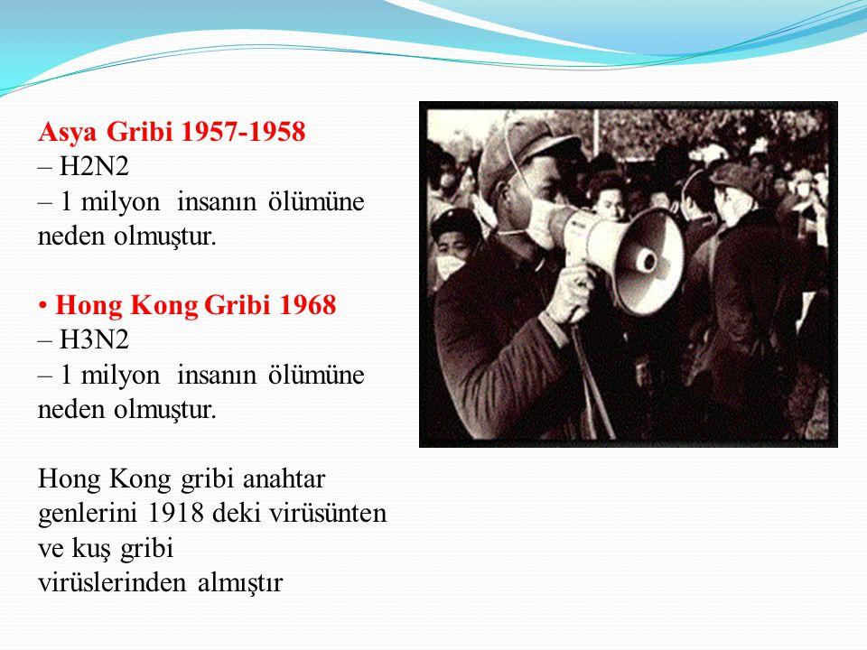 Asya Gribi 1957-1958 – H2N2 – 1 milyon insanın ölümüne neden olmuştur. Hong Kong Gribi 1968 – H3N2 – 1 milyon insanın ölümüne neden olmuştur. Hong Kon